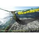 Increased exports of pelagic fish in 2014