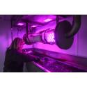 Forskningsprojekt i Lund skapar framtidens reningsverk