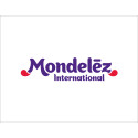 Mondelēz International Foundation Hosts Global NGO Summit Promoting Healthy Lifestyles for Youth