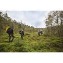 Hovdala och Mölleröd naturområde bjuder på varierande vandringsupplevelser