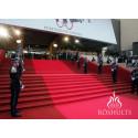 Röshults på Filmfestivalen i Cannes