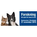 Forskning till nytta för hund & katt