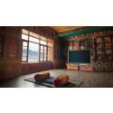 100 päivää buddhaluostarissa televisiota katsellen
