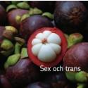 Äntligen nytt material för dig som vill veta mer om sex och trans