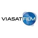 Var fjärde svensk ser film hemma flera gånger i veckan