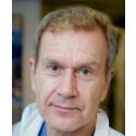 Hjärnfonden delar ut 26,5 miljoner kronor till svensk hjärnforskning