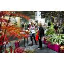 Stabiele groei in Scandinavische tuinbranche