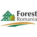 Forest Romania 16-18 sept 2015 – mitt i hjärtat av Transylvanien
