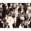 Norge granskes av FNs komité mot rasediskriminering