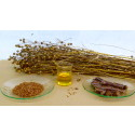 ​Linseed Oil Market Research Report – Global Market Analysis - 2015