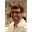 Balansen av byggstenar viktig för korrekt kopiering av DNA
