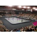 SM-finalen vill slå världsrekord i Tele2 Arena