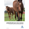 HNS strategiplan 2013-2015