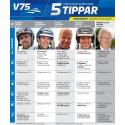 Fem Tippar V75 20150829