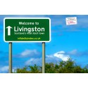 Livingston the Most Adulterous town in Scotland!