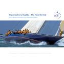ACE Agility-rapport 2010