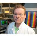Ny mekanism bakom insulinresistens i typ 2-diabetes