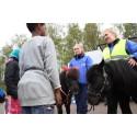 Upplev Häst tillbaka på skolgården