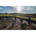 Skat fra vikingetiden udgraves i Hornelund ved Varde
