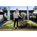 Karin Stenmar, miljöchef på Folksam, planterar träd i Almedalen