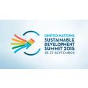 Hungerprojektets globala VD talar på FN-toppmöte
