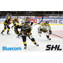 Free WiFi access at Swedish Hockey League arenas provided by Bluecom, monitored by op5