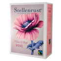 Stellenrust Rosé - Pillar & Post – Fairtrade på bag-in-box