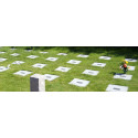Okunskap råder angående gravsättning i Stockholm