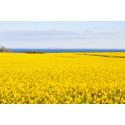 Preems försäljning av Biodiesel 100 ökade med 86 % under 2014