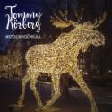 Tommy Körberg sjunger nyskriven jullåt om Stockholm