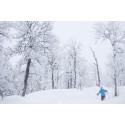 SkiStar AB: God sesongstart i Hemsedal og Trysil
