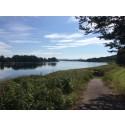 Norrlands inland har färg