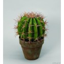 Kaktus -symbolen för Arid