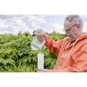 Läkemedel i avloppsvatten renas av naturen