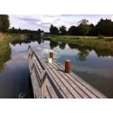 Ny studie: Vandrarmusslan kan spridas i hela Göta kanal