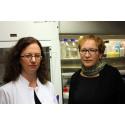HUS kehittää kemikaaliturvallisuuttaan yhteistyössä EcoOnlinen kanssa