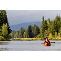 Utländska turister i Sverige vill resa runt, njuta av naturen och uppleva storstäderna