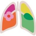 Illustration Svenska Lungrapporten
