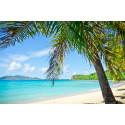 Upeat risteilymatkat Karibialle ja Persianlahdelle