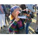 Sveriges nationalfågel avslöjas på Falsterbo Bird Show