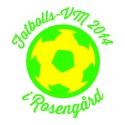 Fotbollsfest i Rosengård under Fotbolls-VM