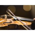 Utbildar för världens främsta symfoniorkestrar