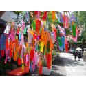Tanabata-festival på Etnografiska