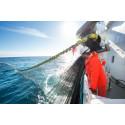 Nedgang for pelagisk fisk første halvår