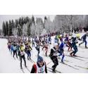 Stockholm har flest deltagare anmälda till Vasaloppets vintervecka 2015 – se statistiken län för län