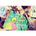 Iværksættertalenter i verdensklasse søger til Danmark - Læring og netværk er afgørende