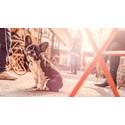 Royal Canin lanserar världens första livsstilsanpassade hundfoder