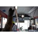 Consat Telematics lanserar nu Media Management Studio – Flygbussarna första kund
