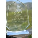 Rebtel Crowned 2012 Bully Award Winner