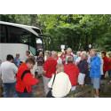 Tillväxt och fler anställda hos svenska bussresearrangörer